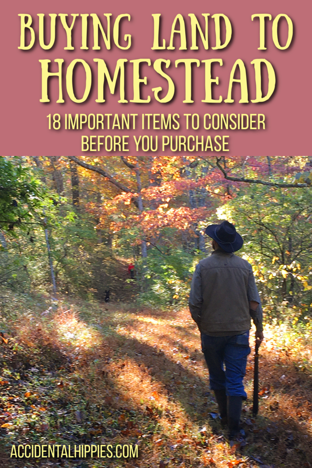 Buying Homestead Land: 18 Things to Consider Before You Purchase, man walking in the woods