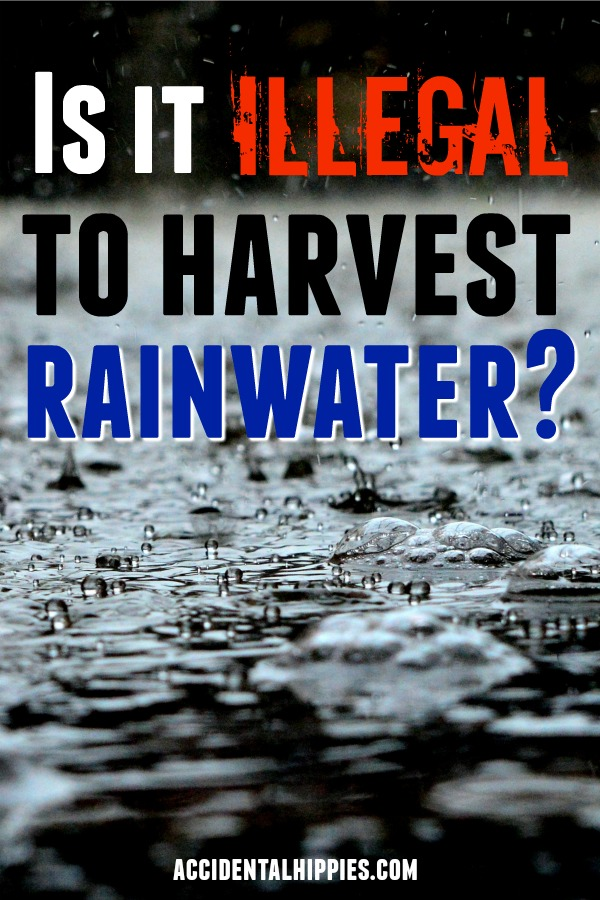 Want to go off the grid but you've heard that rainwater harvesting is ILLEGAL? Do your research first. Learn how to check the laws in your state and find out what to do before you build a rainwater system. #offgrid #selfsufficiency #offgridwater