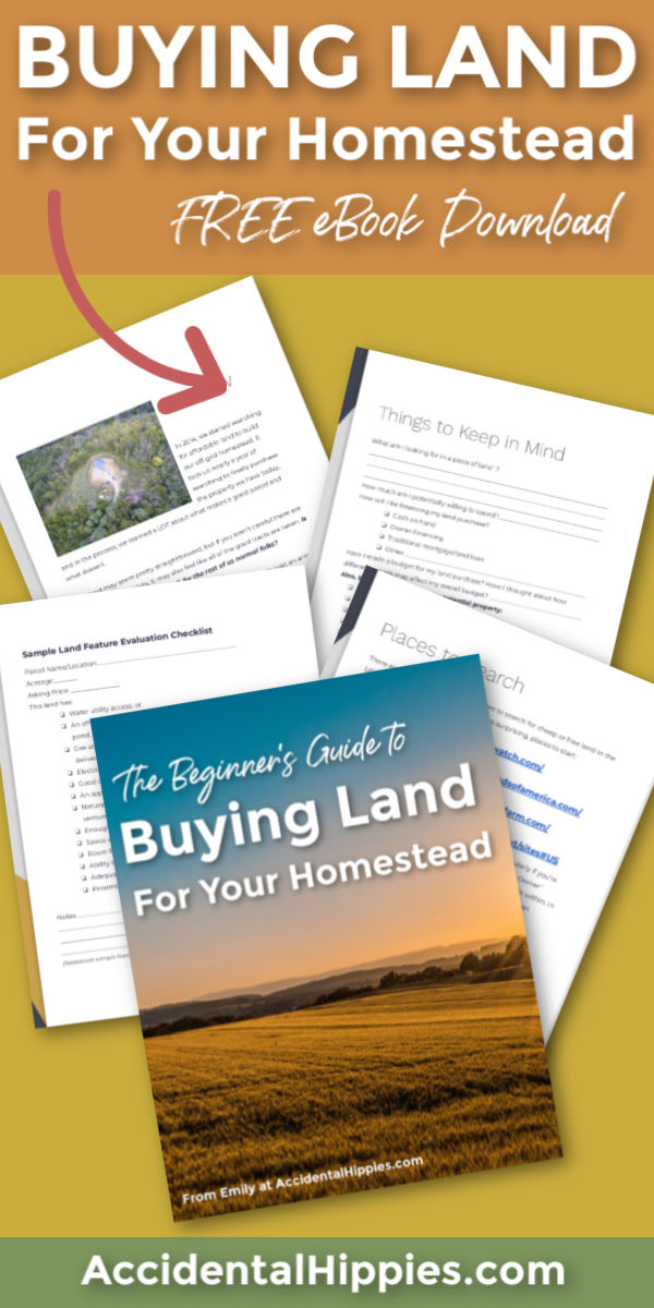 Buying Land for Your Homestead ebook and example pages