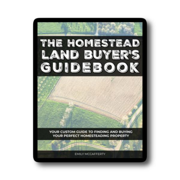 The Homestead Land Buyer's Guidebook